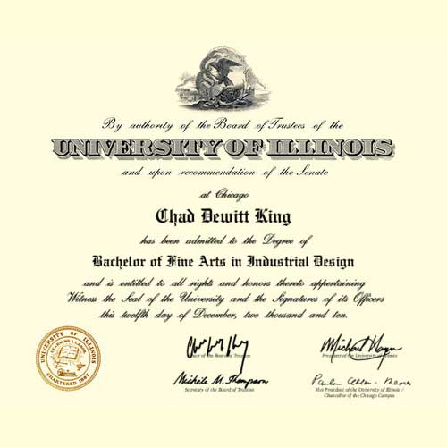 Bachelor of Fine Arts - University of Illinois at Chicago